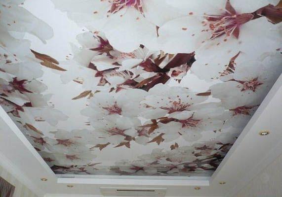 Натяжной потолок с фотопечатью - орхидея