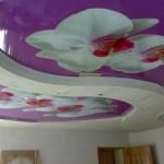 Фото потолка с цветами