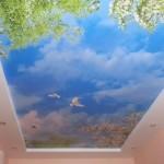 Фотопечать на потолке неба и птиц